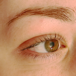 Sourcils permanent pixelle6