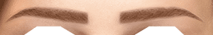 img-sourcils-v2-oriental